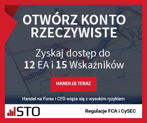 rynkinazywo-300x250-pl.png