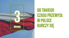 pmi polska